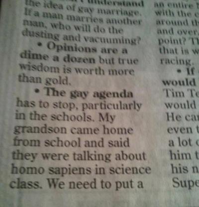 gay agenda2