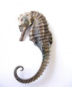 hippocampus_2773204