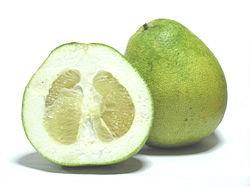 250px-Citrus_grandis_-_Honey_White
